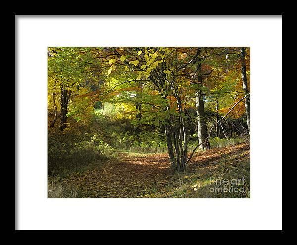 Baar Framed Print featuring the photograph Autumn Feeling by Lutz Baar