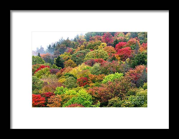 Fall Framed Print featuring the photograph Autumn Highland Scenic Highway by Thomas R Fletcher