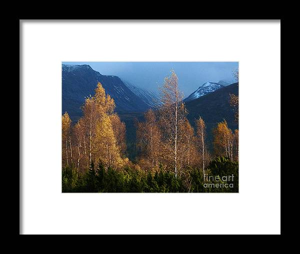 Autumn Framed Print featuring the photograph Autumn Into Winter - Cairngorm Mountains by Phil Banks