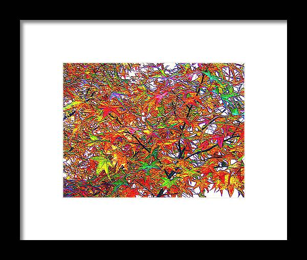 Autumn September October November December Leaves Growth Foliage Branch Branches Limb Limbs Fall Mulch Color Colored Hue Hued Hues Colors Grow Growing Shade Shaded Shades Red Orange Green Blue Indigo Violet Black Grey Gray Autumnal Equinox Sun Sunlight Sunlit Sunny Sunshine Sunning Tree Trees Forest Wood Woods Woodland Woodlands Forests  Framed Print featuring the photograph Autumn Leaves Through Filtered Sunlight II by L Brown
