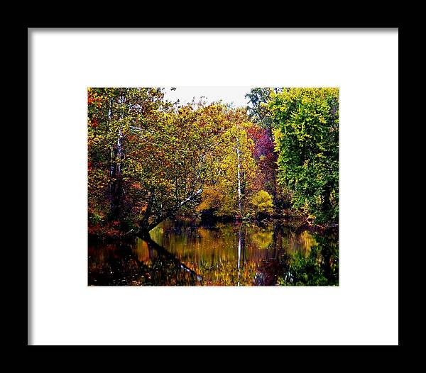 Gettysburg Framed Print featuring the photograph Autumn On Marsh Creek by William Fox