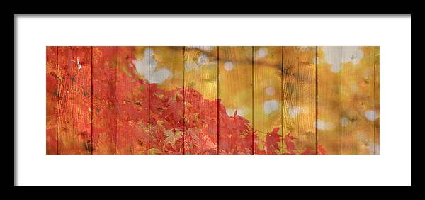 Autumn Framed Print featuring the photograph Autumn Outdoors 1 Of 2 by Beverly Claire Kaiya