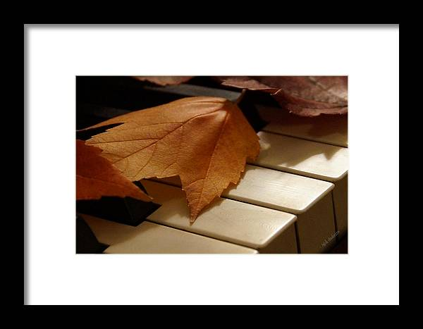 Autumn Framed Print featuring the photograph Autumn Piano 12 by Mick Anderson