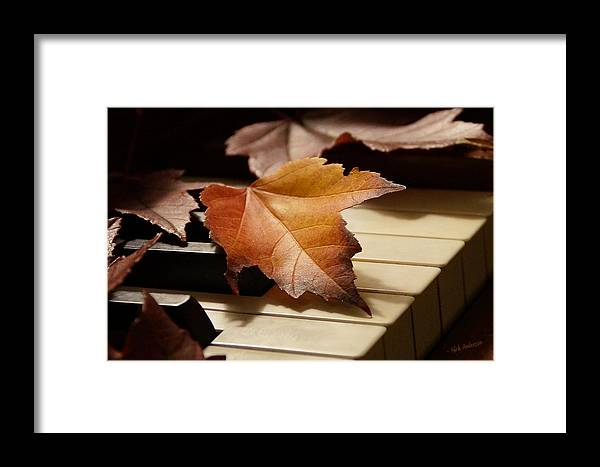 Autumn Framed Print featuring the photograph Autumn Piano 13 by Mick Anderson