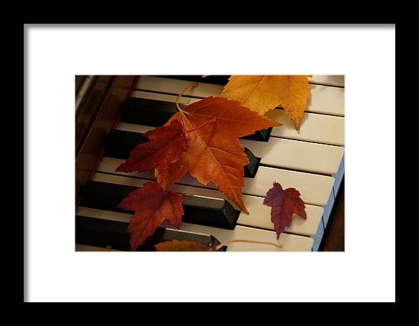 Autumn Framed Print featuring the photograph Autumn Piano 6 by Mick Anderson