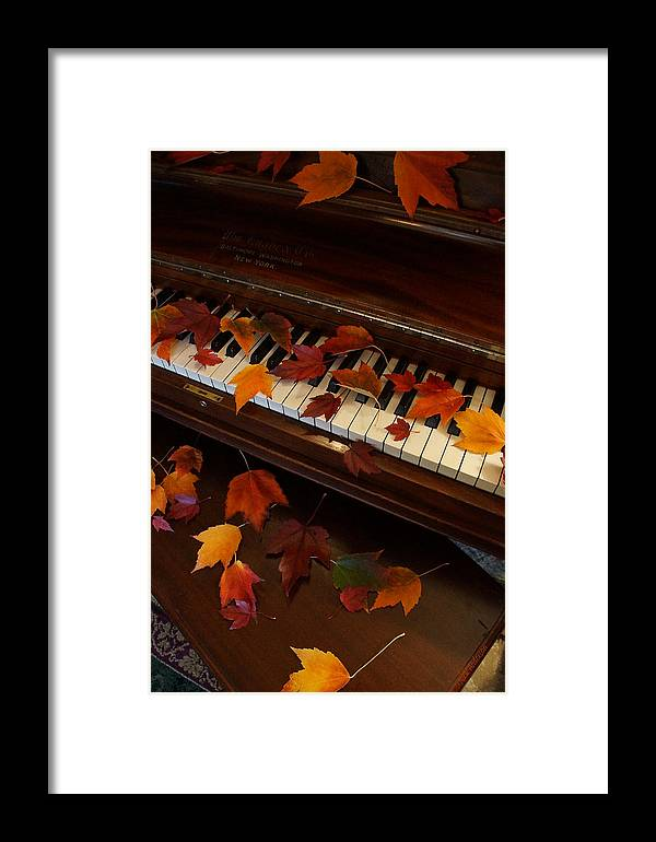Autumn Framed Print featuring the photograph Autumn Piano 7 by Mick Anderson