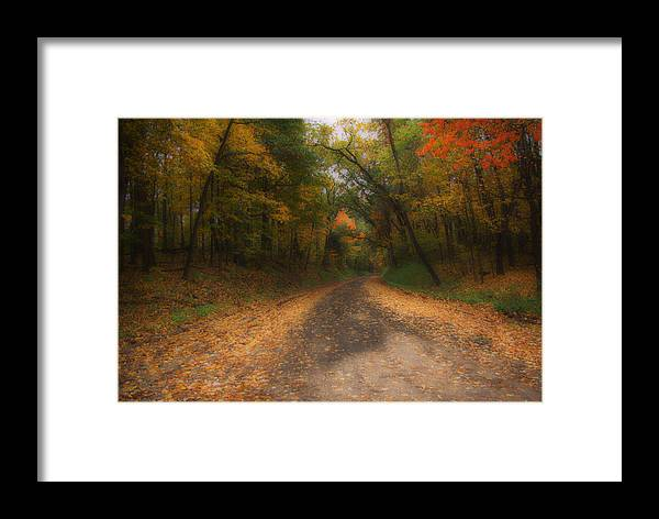 Michigan Framed Print featuring the photograph Autumn Road by Gary Richards