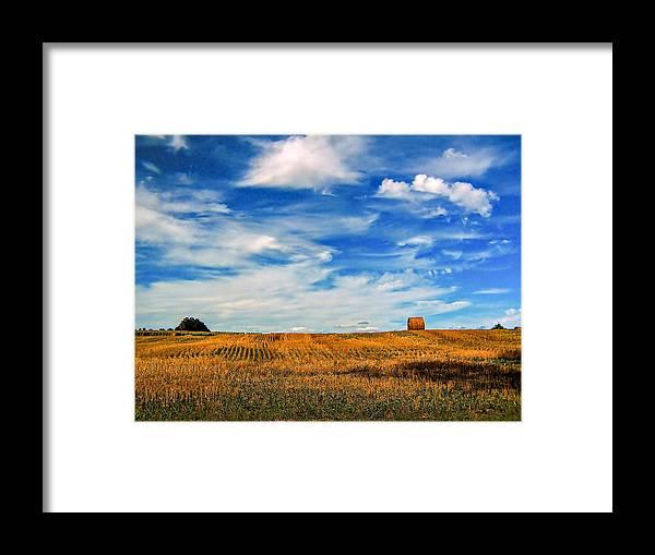 Ontario Framed Print featuring the photograph Autumn Sky by Steve Harrington
