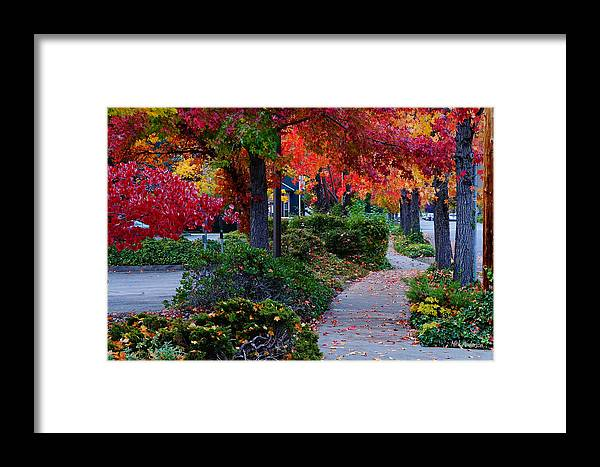 Grants Pass Framed Print featuring the photograph Autumn Walk In Grants Pass by Mick Anderson