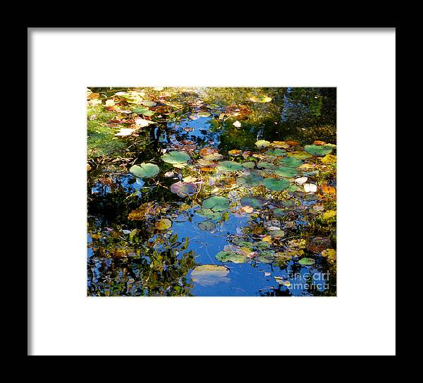 Water Framed Print featuring the photograph Autumn Water Lily Reflections by Nancy Mueller