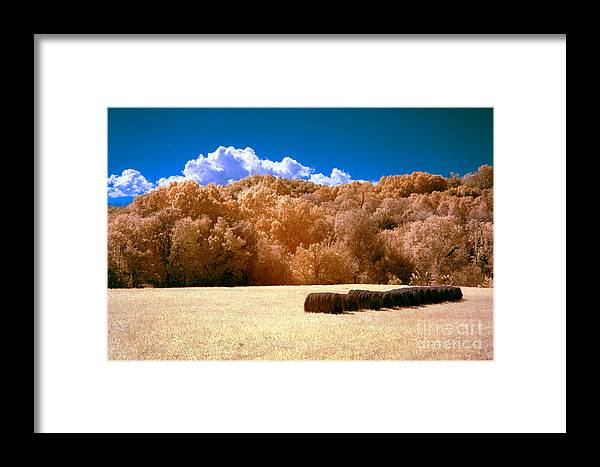 Country Framed Print featuring the photograph Autumn Wheat Field by Paul W Faust - Impressions of Light