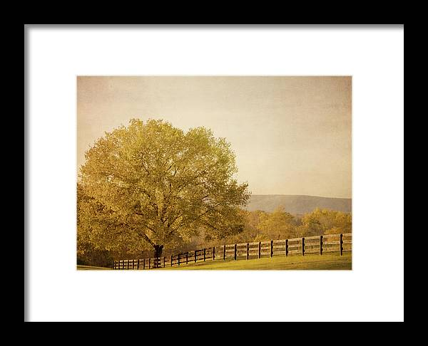 Autumn Framed Print featuring the photograph Autumn Wonders by Kim Hojnacki