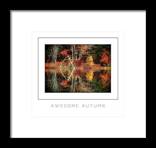 Autumn Framed Print featuring the photograph Awesome Autumn Poster by Mike Nellums