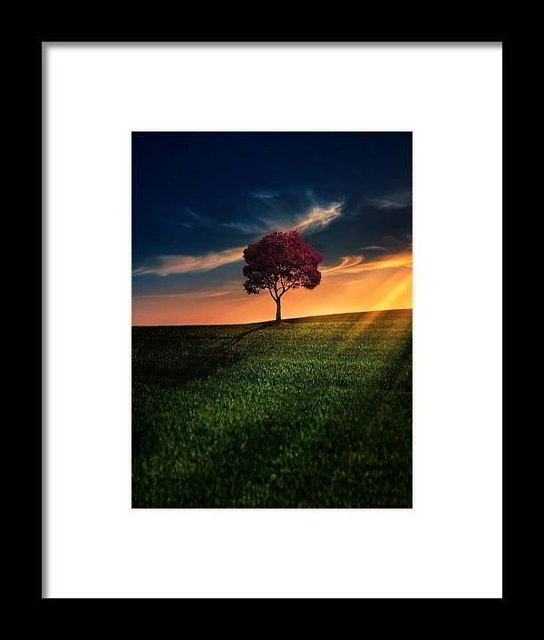 Agriculture Framed Print featuring the photograph Awesome Solitude by Bess Hamiti