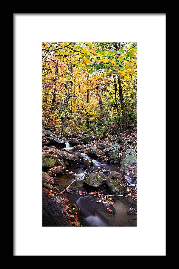 Babbling Brook Framed Print featuring the photograph Babbling Brook by Christopher M Stewart