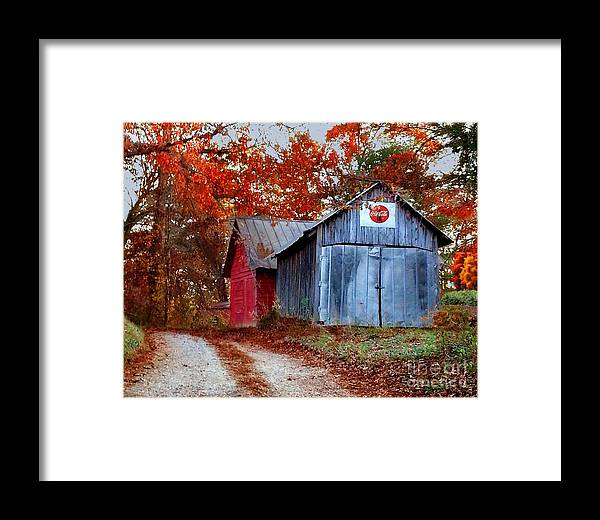 Barn Framed Print featuring the photograph Back Road Treasures by Elizabeth Coats