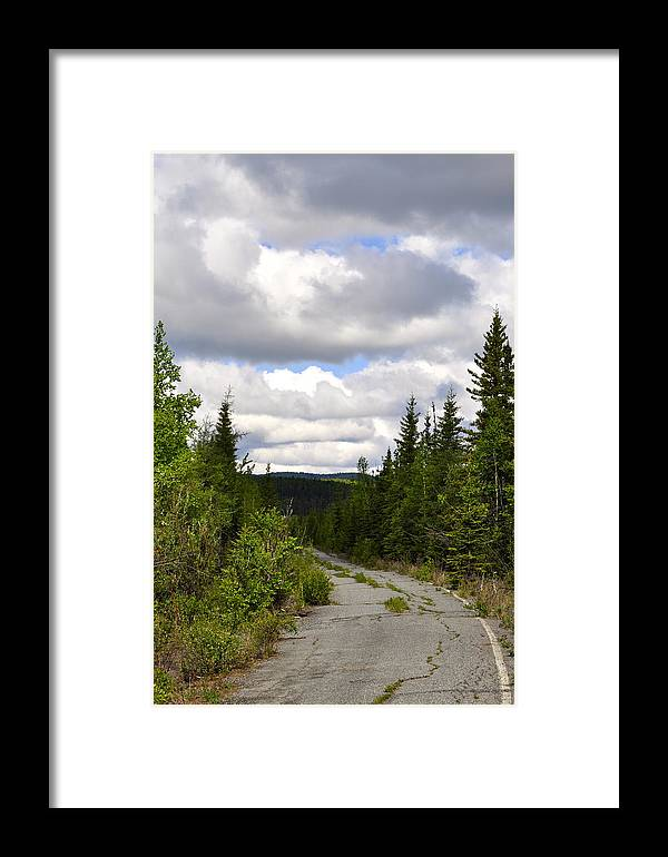 Road Framed Print featuring the photograph Back To Nature by Cathy Mahnke