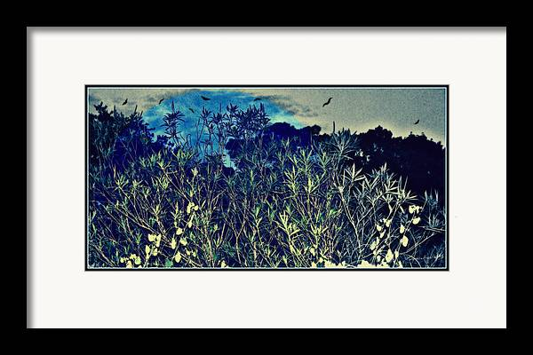 Landscape Framed Print featuring the mixed media Back Yard Sky by YoMamaBird Rhonda