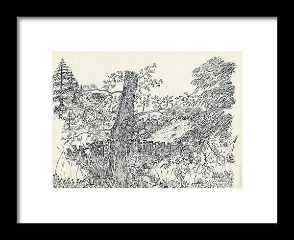Fence Framed Print featuring the drawing Backyard Peace by Carolann Van de Ligt