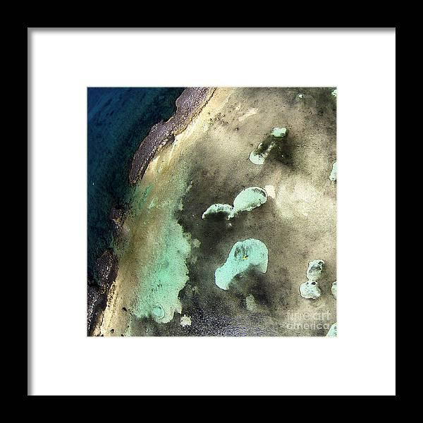 Grand Bahama Framed Print featuring the photograph Bahama Reef by Paola Correa de Albury