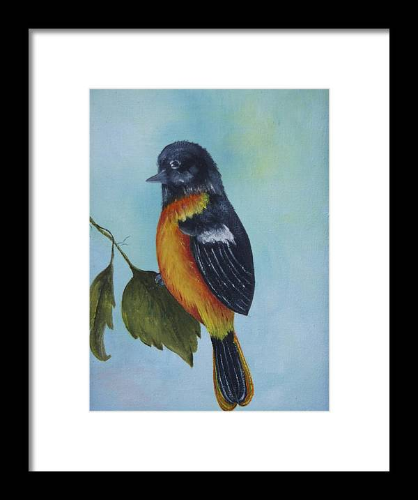 Bird Framed Print featuring the painting Baltimore Oriole by Phyllisann Arthurs