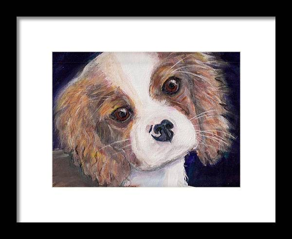 King Charles Framed Print featuring the painting Bandit by Arthur Rice
