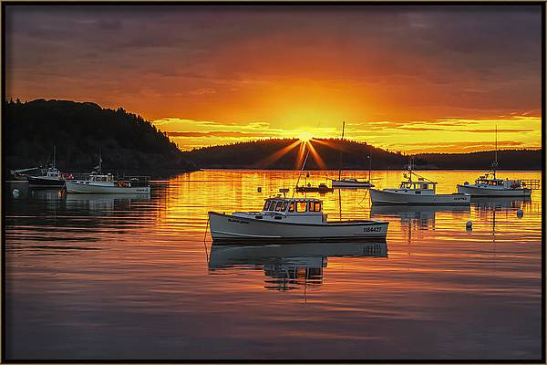 Bar Harbor Sunburst by Xavier Ascanio