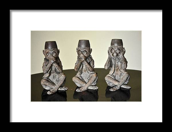 3wise Monkeys Framed Print featuring the photograph Barbary Macaques Monkeys by Jay Milo