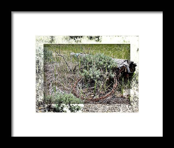 Barbwire Framed Print featuring the photograph Barbwire Wreath 2 by Susan Kinney