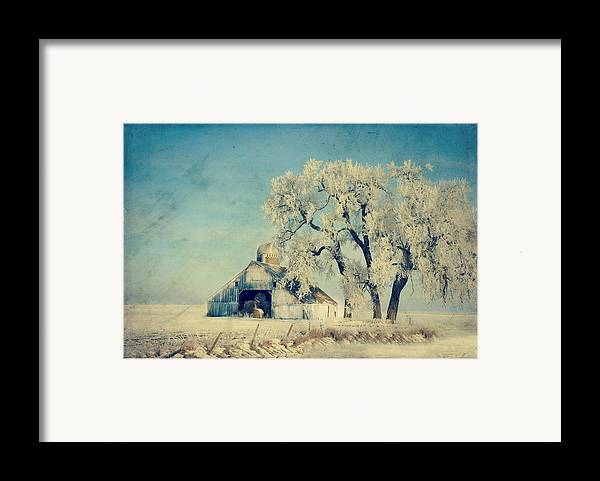 Barn Framed Print featuring the photograph Barn Frosty Trees by Julie Hamilton