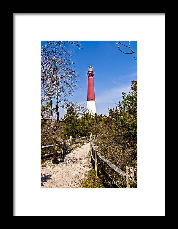 Lighthouses Framed Print featuring the photograph Barnegat Lighthouse II by Anthony Sacco