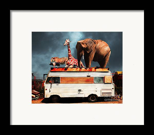 Transportation Framed Print featuring the photograph Barnum And Bailey Goes On A Road Trip 5d22705 by Wingsdomain Art and Photography