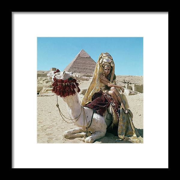 Fashion Framed Print featuring the photograph Baronne Van Zuylen On A Camel by Leombruno-Bodi
