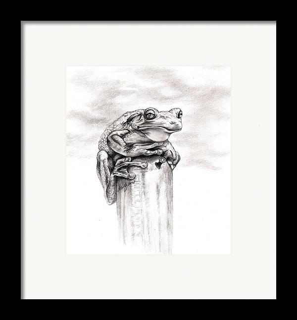 Frog Framed Print featuring the drawing Batting Coach by Kathleen Kelly Thompson