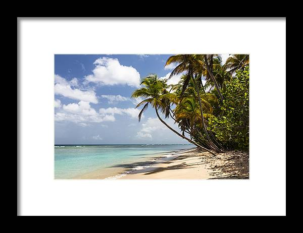 Konrad Wothe Framed Print featuring the photograph Beach Pigeon Point Tobago West Indies by Konrad Wothe