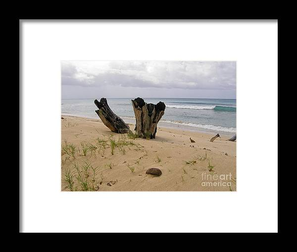 Beach Framed Print featuring the photograph Beach Scenery by Sophie Vigneault