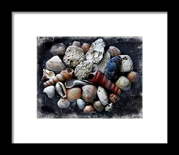 Landscape Framed Print featuring the photograph Beach Treasures by Virginia Folkman