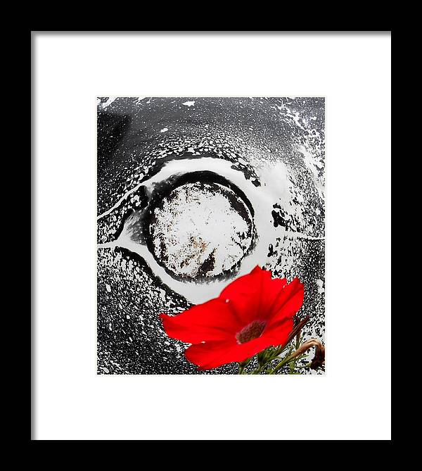 Flowers Framed Print featuring the photograph Beautiful Alien by Yuriy Vekshinskiy