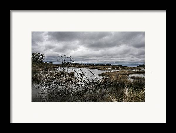 Landscape Framed Print featuring the photograph Beautifully Fallen by Steven Taylor