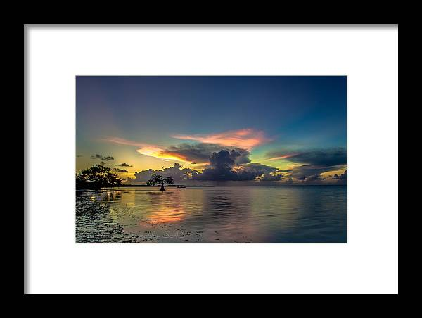 Florida Framed Print featuring the photograph Beauty And Power by Scott Stocklin
