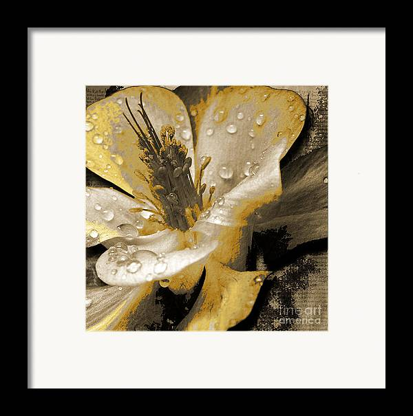 Framed Print featuring the mixed media Beauty II by Yanni Theodorou