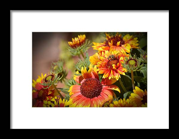 Texas Framed Print featuring the photograph Beauty In The Garden by Lynn Bauer
