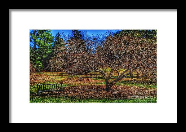 Bench Framed Print featuring the photograph Bench in shadow by Rrrose Pix