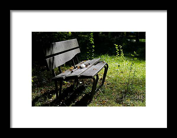 Bench Framed Print featuring the photograph Bench by Mats Silvan