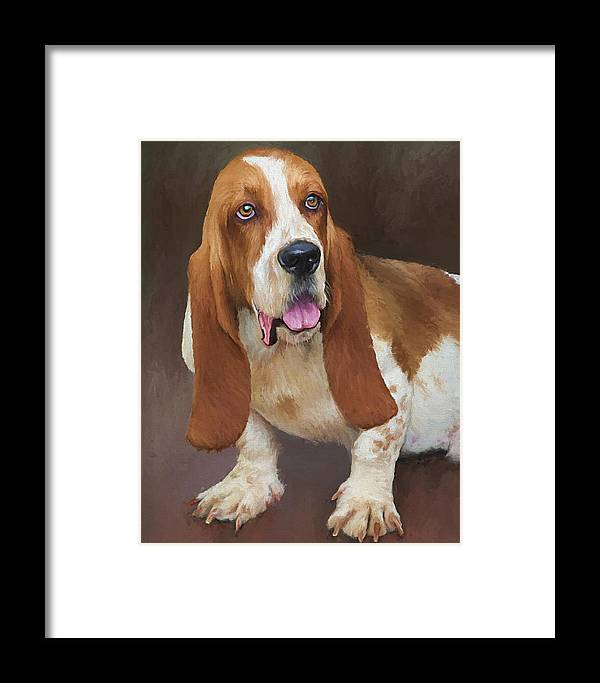 Bassett Hound Framed Print featuring the painting Bert by David Wagner