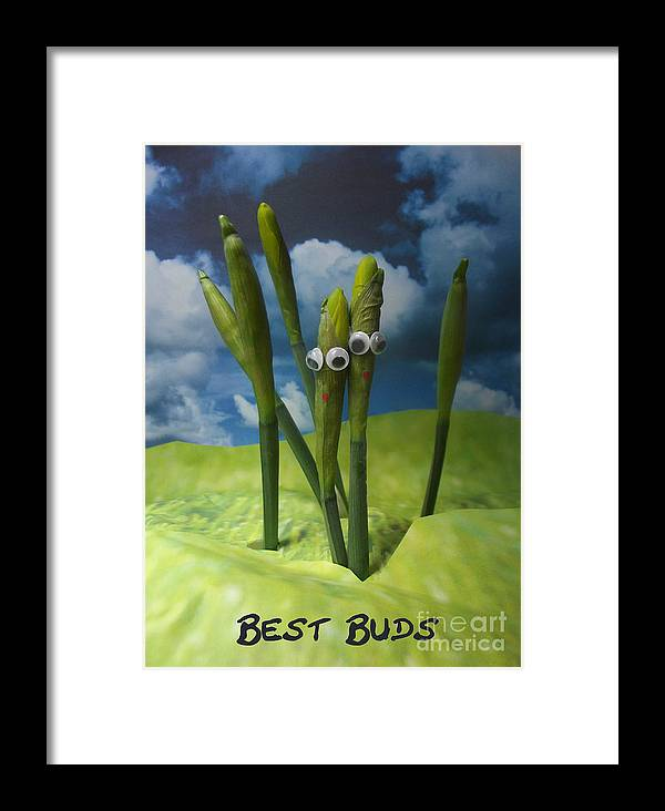 Silly Framed Print featuring the photograph Best Buds by Caroline Peacock