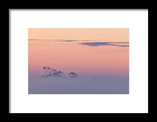 Fog Framed Print featuring the photograph Beyond The Fog by Denise Bush