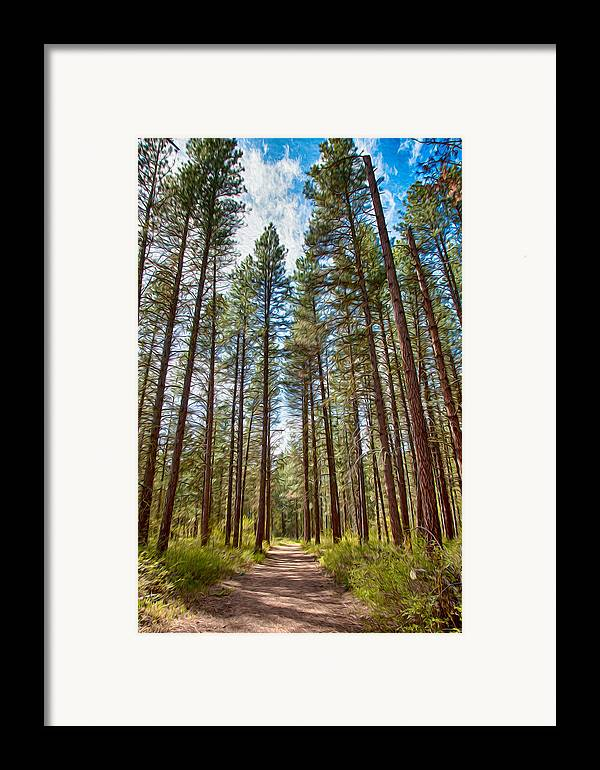 North Cascades Framed Print featuring the painting Big Valley Views Mvsta Trail by Omaste Witkowski