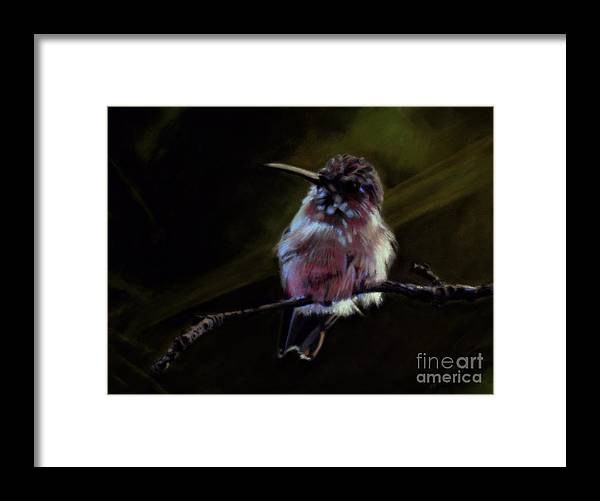 Hummingbird Framed Print featuring the pastel Bigger than Life by Keith Gantos
