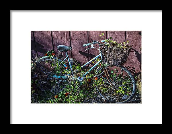 Bike Framed Print featuring the photograph Bike In The Vines by Garry Gay